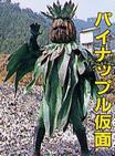 File:Pineapple Mask.jpg