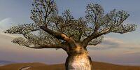 Blba Tree