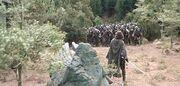 Aragorn vs orcs1