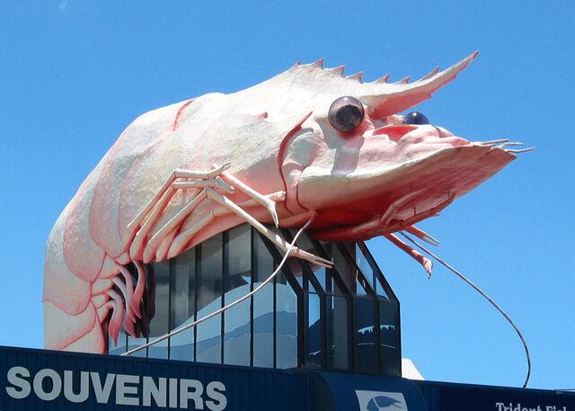 File:The-big-prawn-1989.jpg