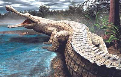 File:Prehistoric-croc.jpg