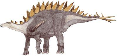 Tuojiangosaurus wikidino