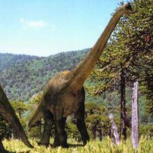 300px-WWDBook Brachiosaurus