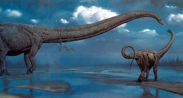File:Mh mamenchisaurus-1-.jpg