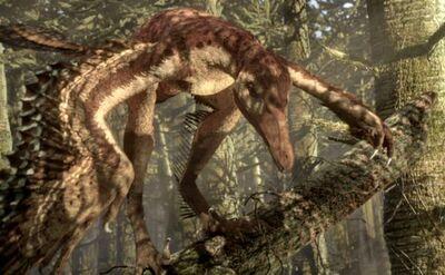 Sinornithosaurus 1