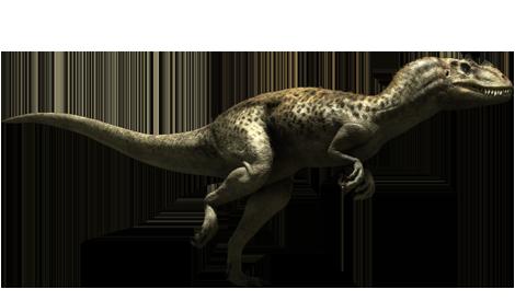 File:Ceratosaurus-1-.png