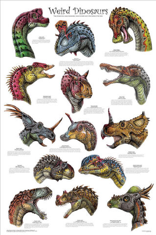 File:Weird dinosaurs poster-1-.jpg