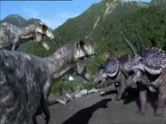 Rex vs trike