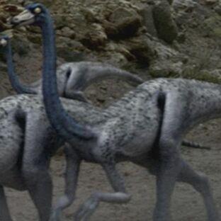 OrnithomimusPortrait