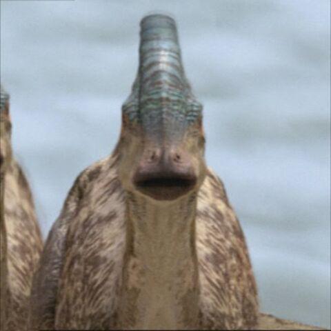 File:ParasaurolophusPortrait.jpg