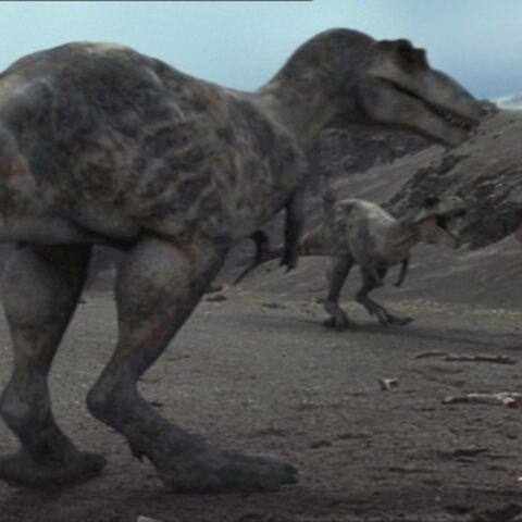 File:TyrannosaurusPortrait.jpg