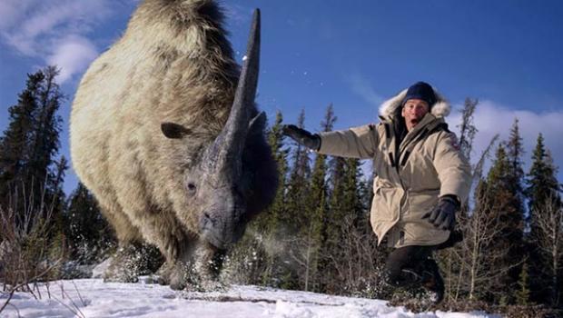 File:Rhino....jpg