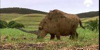 Elasmotherium Paddock