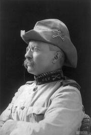 Theodore Rooseveltnewtry