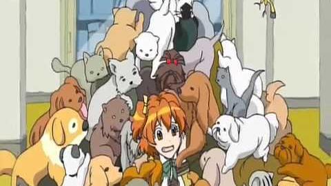 Fresh Pretty Cure Opening 1 HD-0