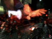 Talon - tommys spirit hawk