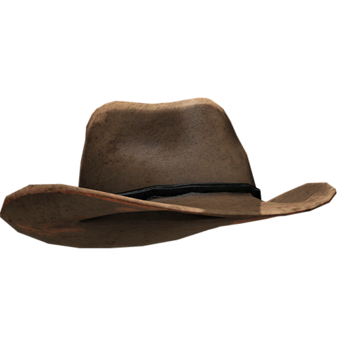 File:Cowboy Hat.png