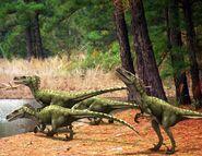 Dromaeosaurus px
