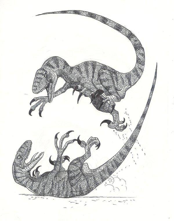 Combattimento Tra Raptor