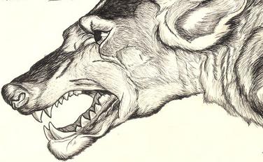 Beast(france)