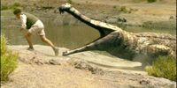 Sarcosuchus (PAS)