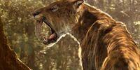 Smilodon (ARIT)