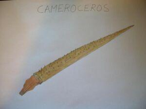 PrimevalContinuedCameroceros