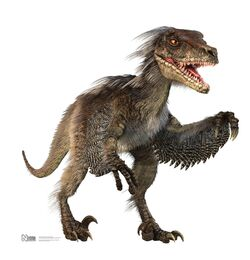 VelociraptorPR