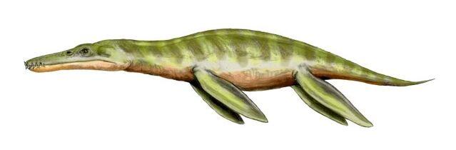 File:Liopleurodon BW-1-.jpg
