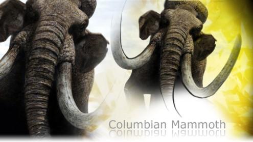 File:495px-Mammoth promo.jpg