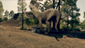 1x6 Gorgonopsid 11