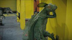 2x7 Raptor 6