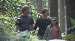 2.5 team in forest adventure park