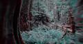 Thumbnail for version as of 20:27, November 23, 2012