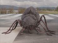 NW1x3 BeetleQueenMain