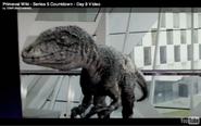728px-Dromaeosaurus 2
