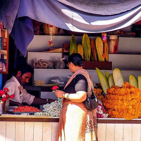 File:Flower vendor..jpg