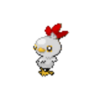 Chicken Torchic