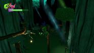 Swamp Treetops