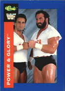 1991 WWF Classic Superstars Cards Power & Glory 82
