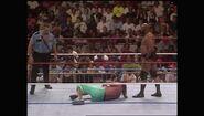 SummerSlam 1990.00031