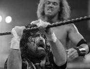 WrestleMania 22.22