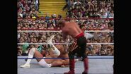 SummerSlam 1992.00006