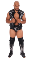 Jay Lethal 2016