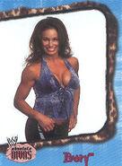 2002 WWE Absolute Divas (Fleer) Ivory 18