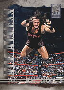 2002 WWF All Access (Fleer) Rhyno 20