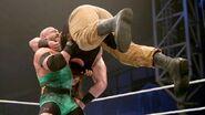 WWE World Tour 2015 - Minehead.9