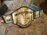 NWA Mid-Atlantic Champion (2)