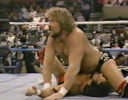1.16.88 WWF Superstars.00020