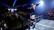 WWE World Tour 2014 - Paris.1